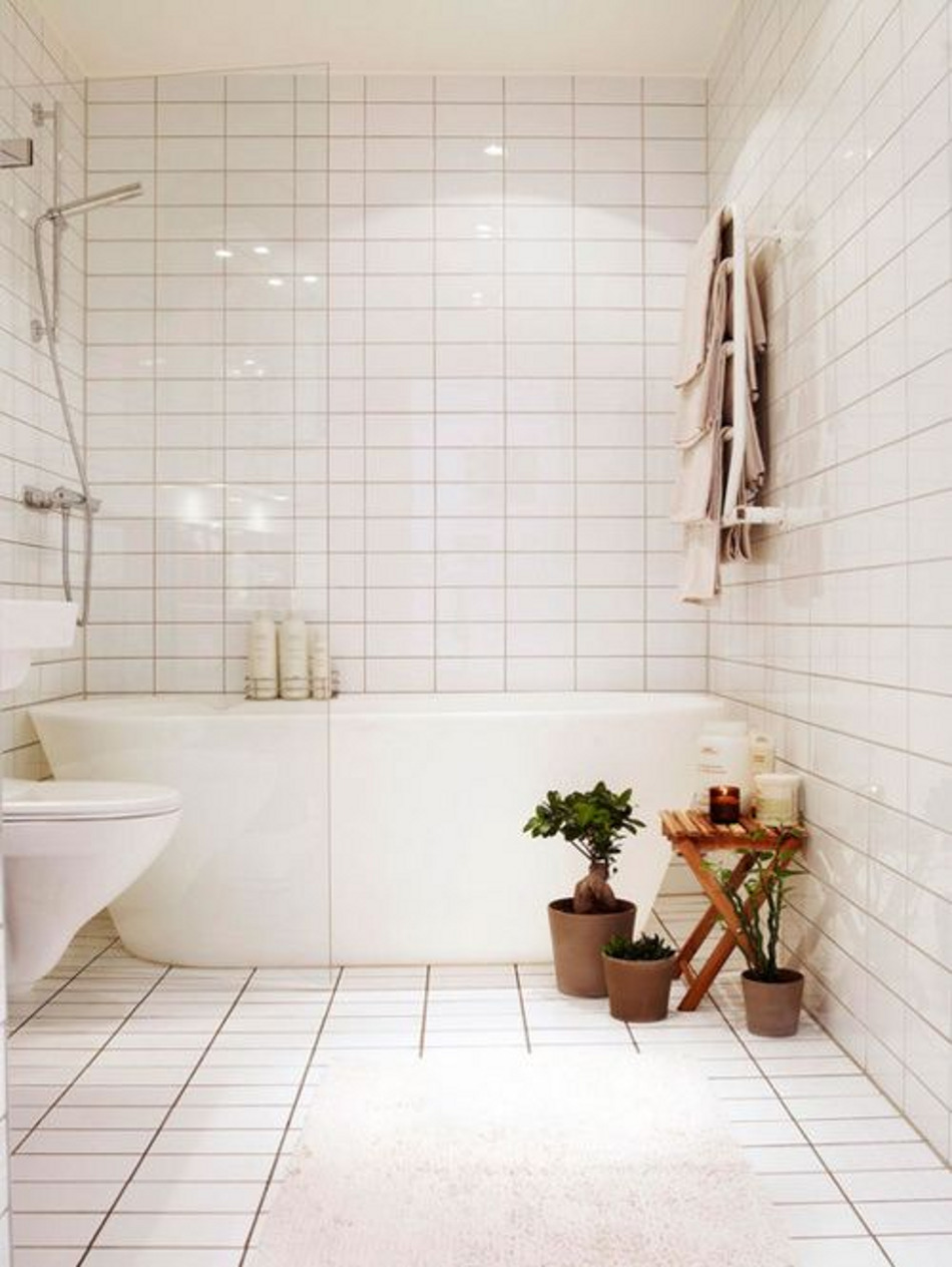 Pinterest - Plants in bathroom, scaled
